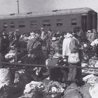 Japanese repatriates in Tanggu